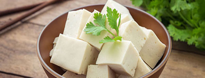 San Francisco Events - Northern California Soy and Tofu Festival