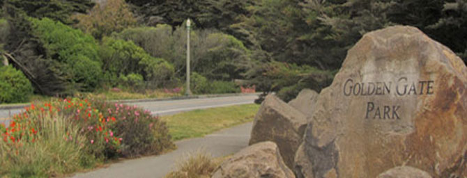 Exciting and Fun Things To Do In Golden Gate Park San Francisco